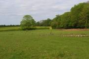 Pastures, Eaton Hastings