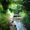 Water lane Belph near  Whitwell