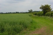 Farmland, Longcot