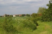 View along disused railway towards Billups Siding Farm