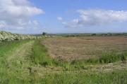 Farmland near Lowick