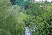 River Wheelock