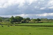 View towards Davenham church