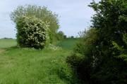 South of Garton