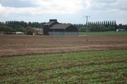 Farmland near Hail Weston