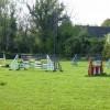 Horse jumps at Upper Oddington