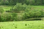 Ponds, Cwm Cewydd valley