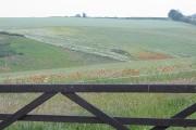 Impressionist fields near Kingstone