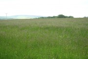 North Molton: near North Heasley Cross