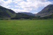 Improved pasture, Glens Clova and Doll