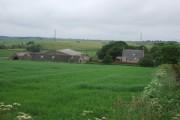 Aulton of Auquharney Farm
