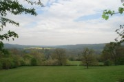 View towards Checkley from Backbury Hill