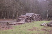 Log pile - Copythorne Common clearance works