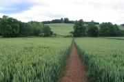 Sor Brook valley