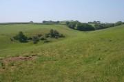 Farmland near Shillingham Manor