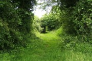 Bridleway out of Reading Green