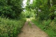 Bridleway near Wakeley Spring.