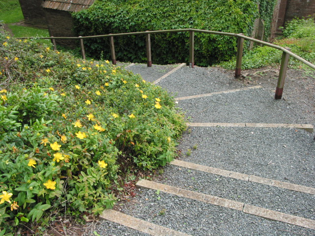 Churchyard steps, St.Catherine's, Hoarwithy