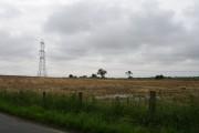 Fallow farmland