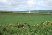 Farmland to the north of the Hill o'Stanes