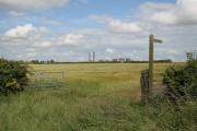 Cornfield and fingerpost