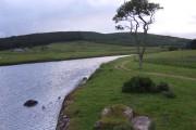 Upstream Black Water