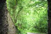 View under bridge carrying Sirhowy Valley Walk