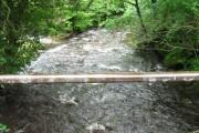 Sirhowy  River seen from bridge.
