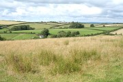 High Bickington: towards Langridge