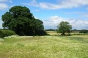 Farmland - Walton Gates