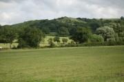 Farmland near Hilfield