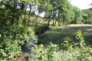 West Looe River - upstream