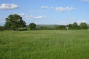 Farmland, Oving Hill Farm near Woodham
