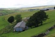 Farm on Manmoel Common