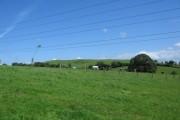 Farmland near Prestleigh