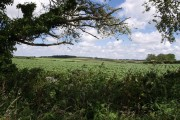 Field beside B3254