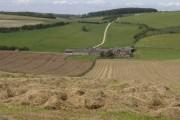 Towards New Barn Farm