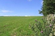 Farmland on Kedslie Hill