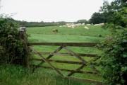 Farmland near Lower Town