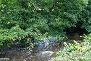 River Rhiw | Afon Riw