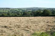 Altarnun: hay field