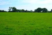 Bricklehurst Farm