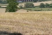 Farmland north of Lowesby