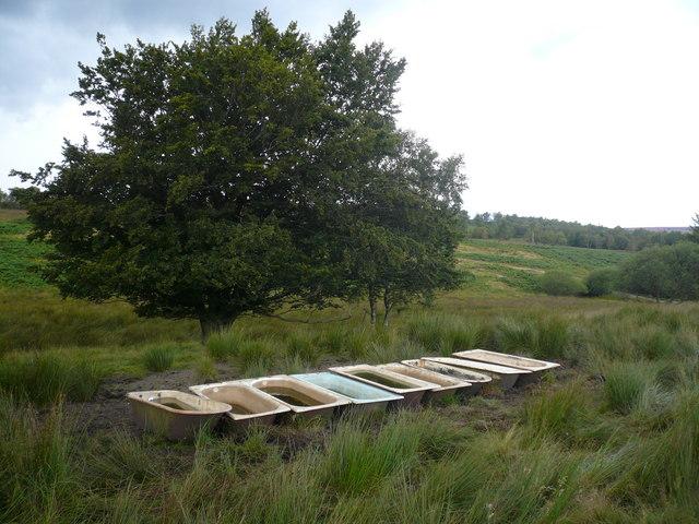 Troughs on Ramsley Moor