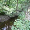Millthorpe Brook Running Out Of Bank Wood