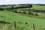 Farmland near Boreland