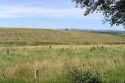 Farmland south-southeast of Burnhead