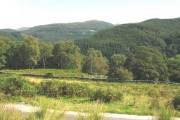 Coed Dolmelynllyn woodlands from Berth-lwyd