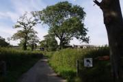 East Gortleigh