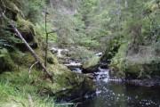 Raven's Rock Gorge